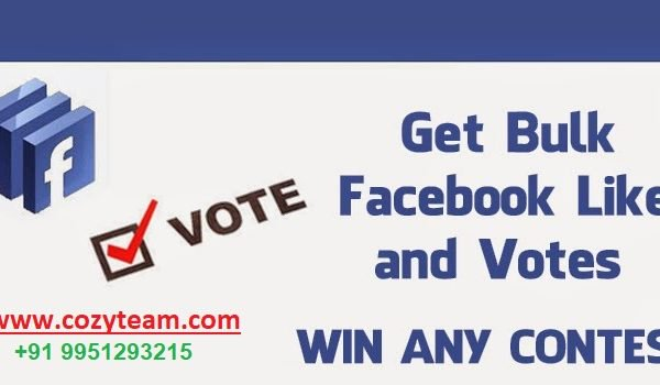 How to get facebook votes on cozyteam.com
